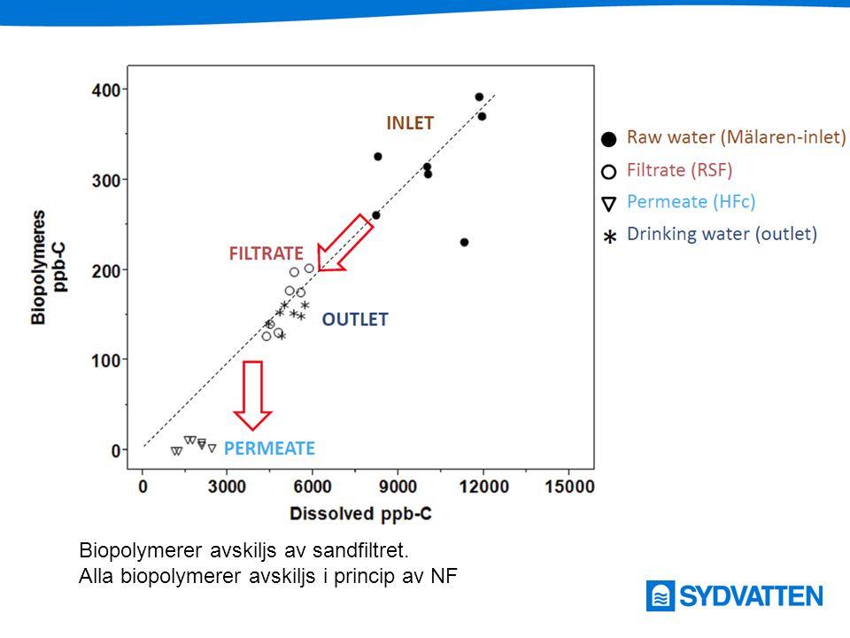 Organiska byggstenar avskiljs av NF i förhållande till dess nominella avskiljningsgrad Organiska byggstenar i förhållande till NOM