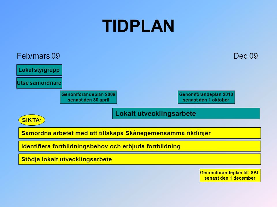 TIDPLAN Feb/mars 09 Dec 09 Lokal styrgrupp Genomförandeplan 2009 senast den 30 april Genomförandeplan 2010 senast den 1 oktober Utse samordnare Lokalt