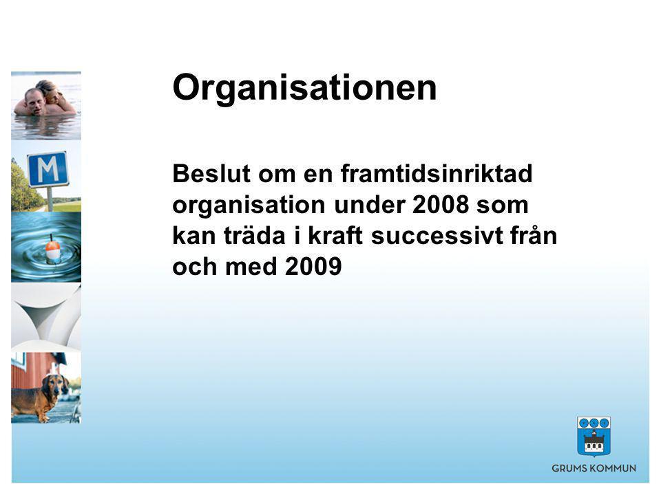 Organisationen Beslut om en framtidsinriktad organisation under 2008 som kan träda i kraft successivt från och med 2009