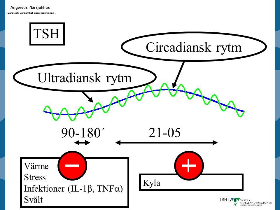 Angereds Närsjukhus - Vård och varsamhet nära människan - TSH 21-05 Circadiansk rytmUltradiansk rytm 90-180´ Värme Stress Infektioner (IL-1 , TNF  ) Svält Kyla TSH rytm