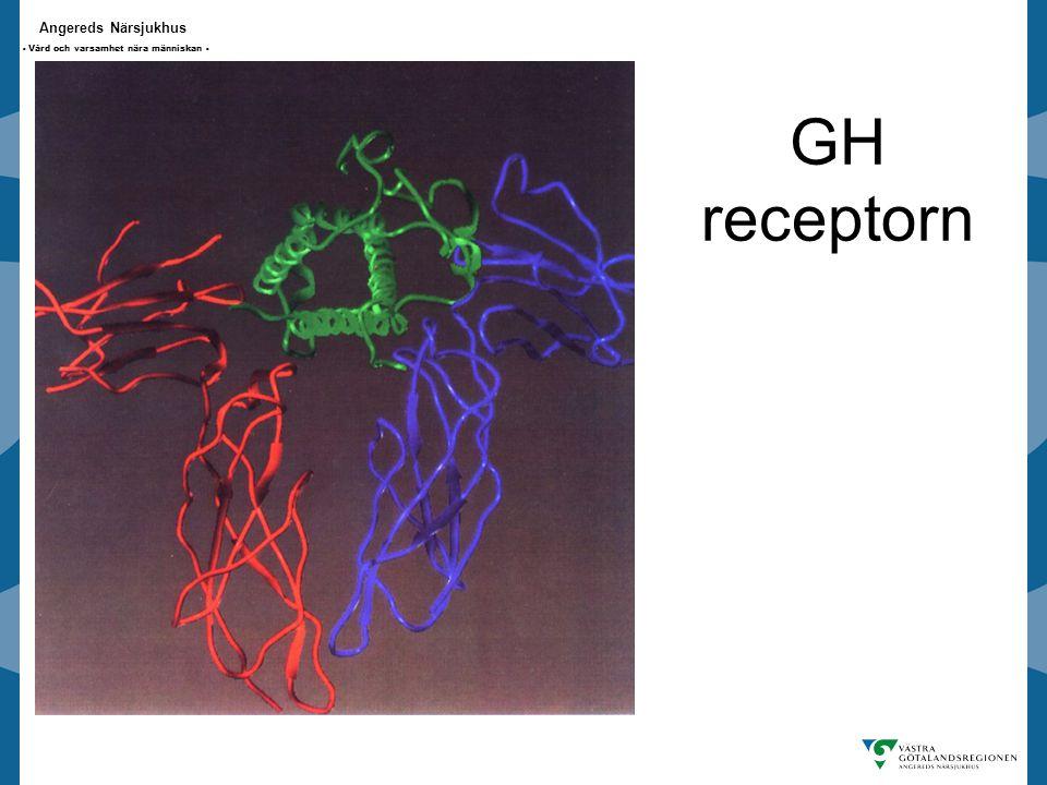 Angereds Närsjukhus - Vård och varsamhet nära människan - GH receptorn