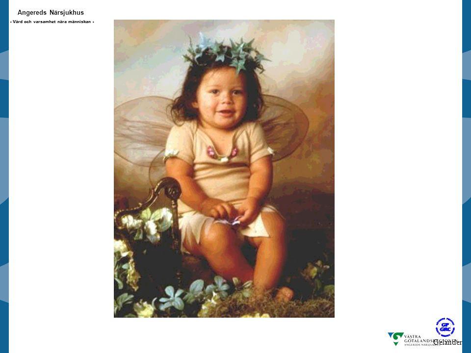 Angereds Närsjukhus - Vård och varsamhet nära människan - Älva Gelander