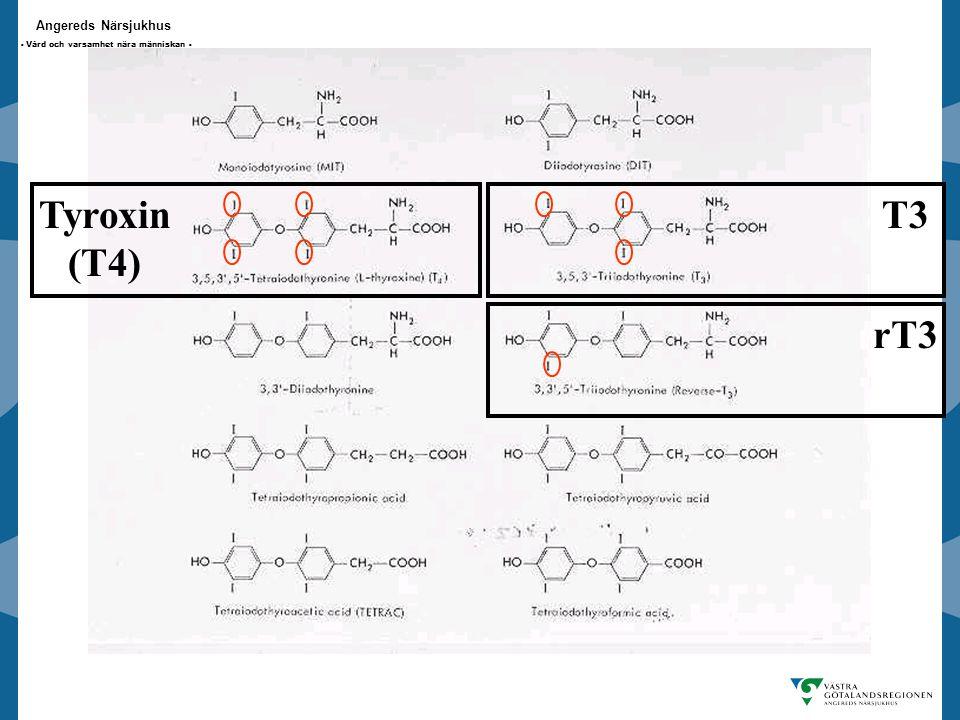 Angereds Närsjukhus - Vård och varsamhet nära människan - Tyroxin (T4) T3 rT3
