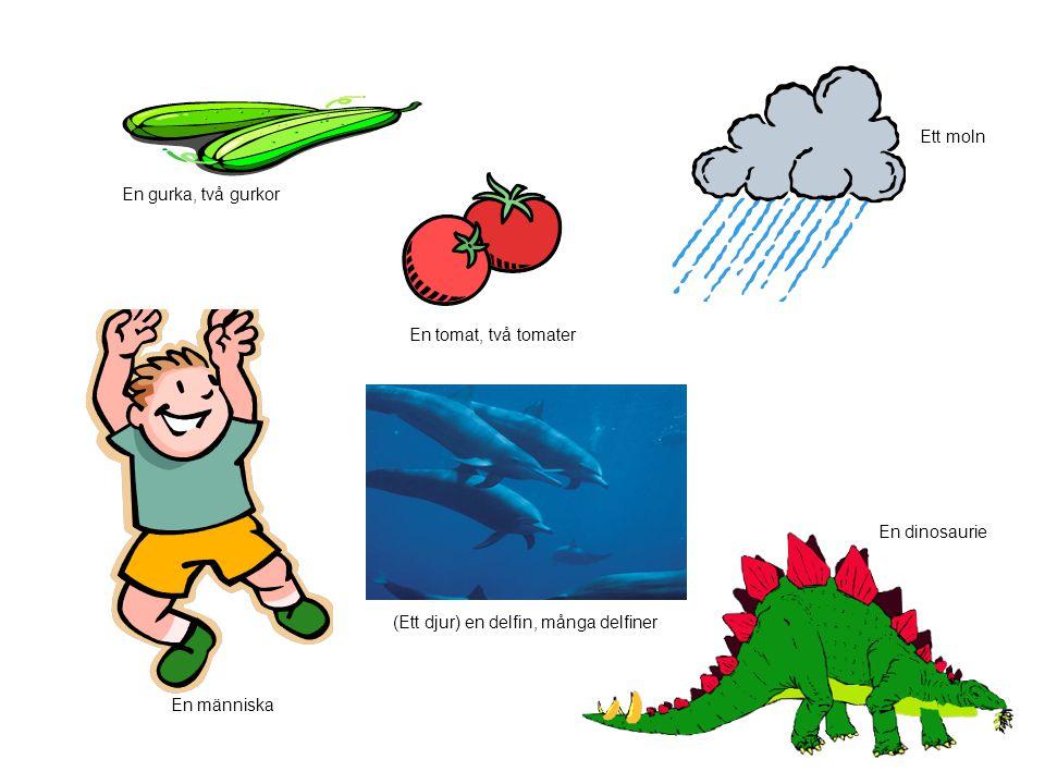 En gurka, två gurkor En tomat, två tomater Ett moln En människa (Ett djur) en delfin, många delfiner En dinosaurie