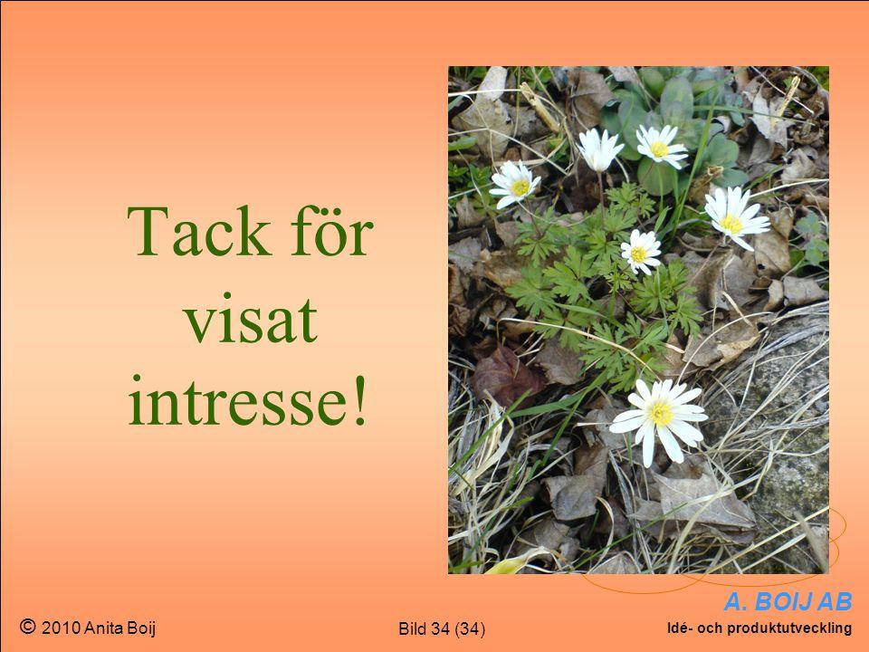 Bild 34 (34) A. BOIJ AB Idé- och produktutveckling © 2010 Anita Boij Tack för visat intresse!
