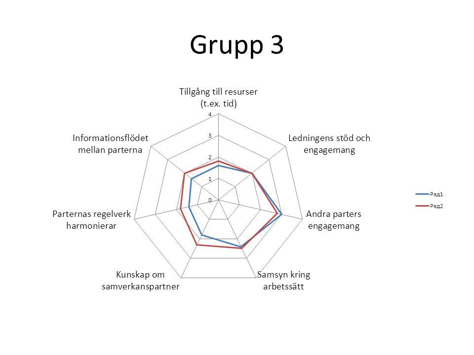 Grupp 3