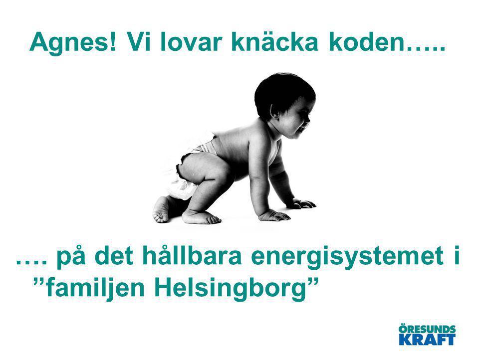 Agnes! Vi lovar knäcka koden….. …. på det hållbara energisystemet i familjen Helsingborg