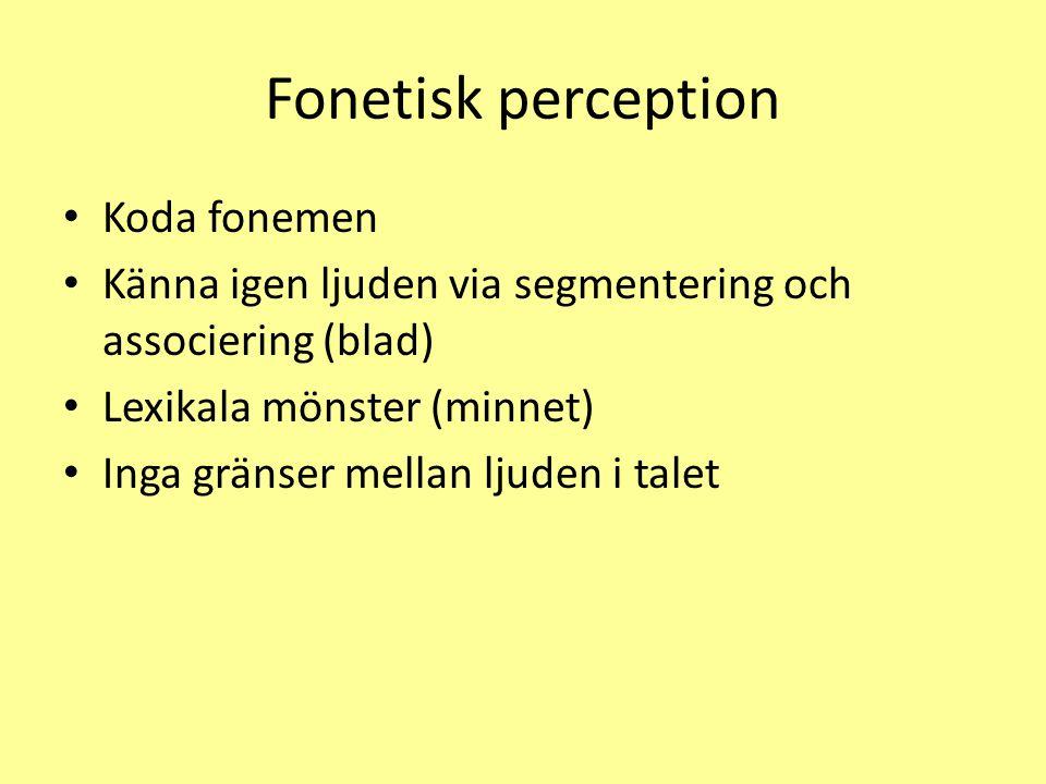 Fonetisk perception Koda fonemen Känna igen ljuden via segmentering och associering (blad) Lexikala mönster (minnet) Inga gränser mellan ljuden i talet