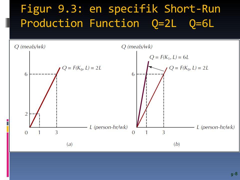Figur 9.3: en specifik Short-Run Production Function Q=2L Q=6L 9-8