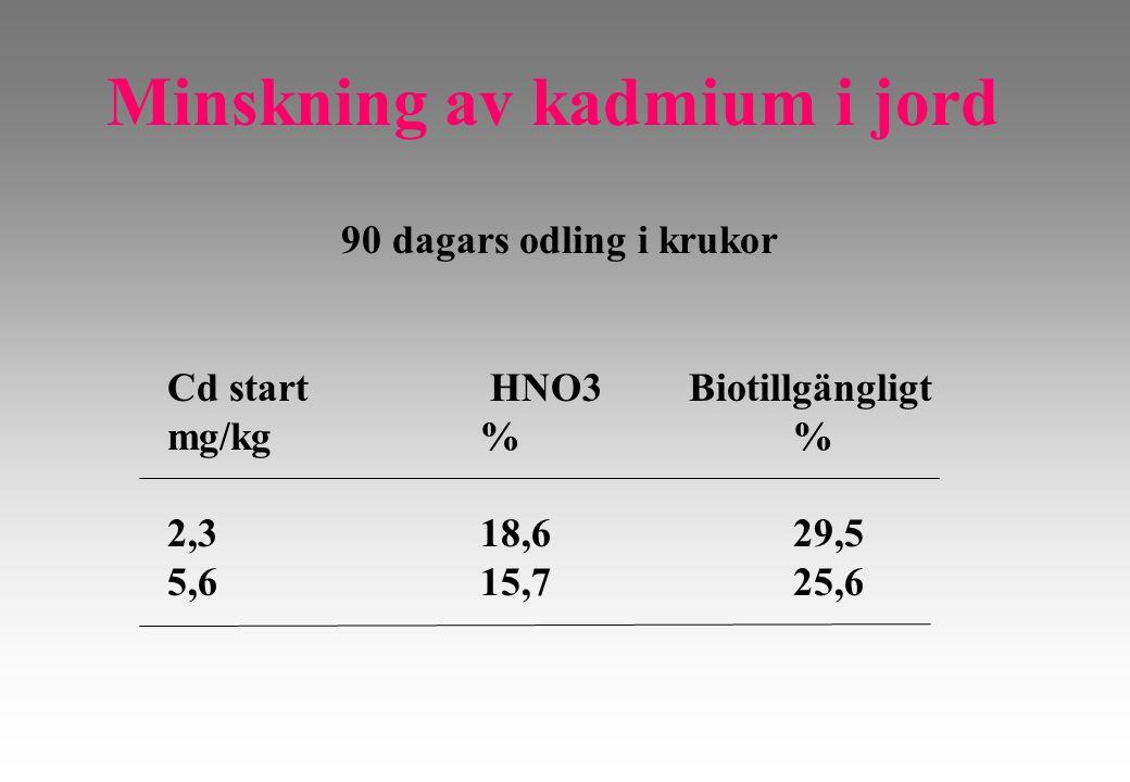 Minskning av kadmium i jord 90 dagars odling i krukor Cd start HNO3 Biotillgängligt mg/kg % 2,318,629,5 5,615,725,6