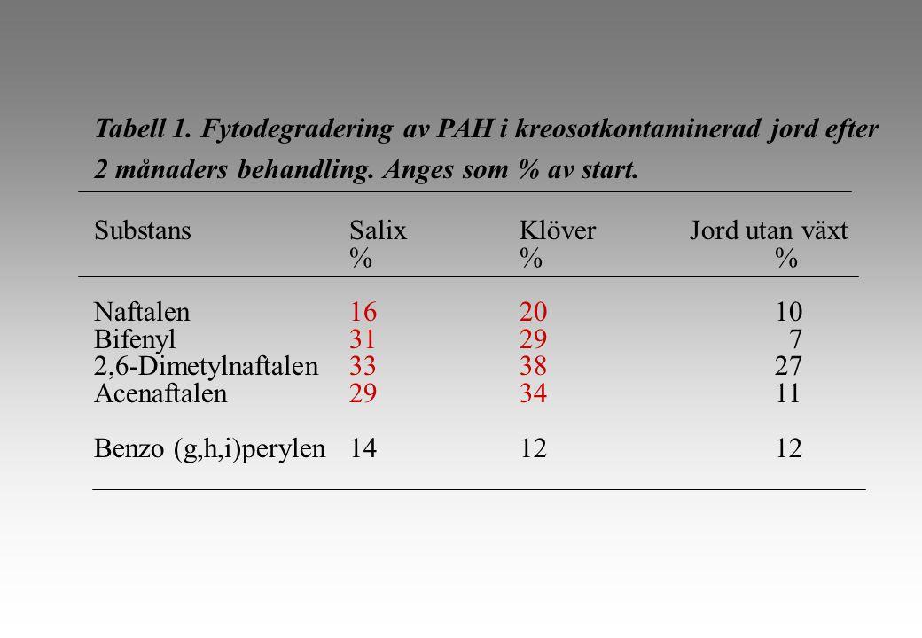 Tabell 1. Fytodegradering av PAH i kreosotkontaminerad jord efter 2 månaders behandling.
