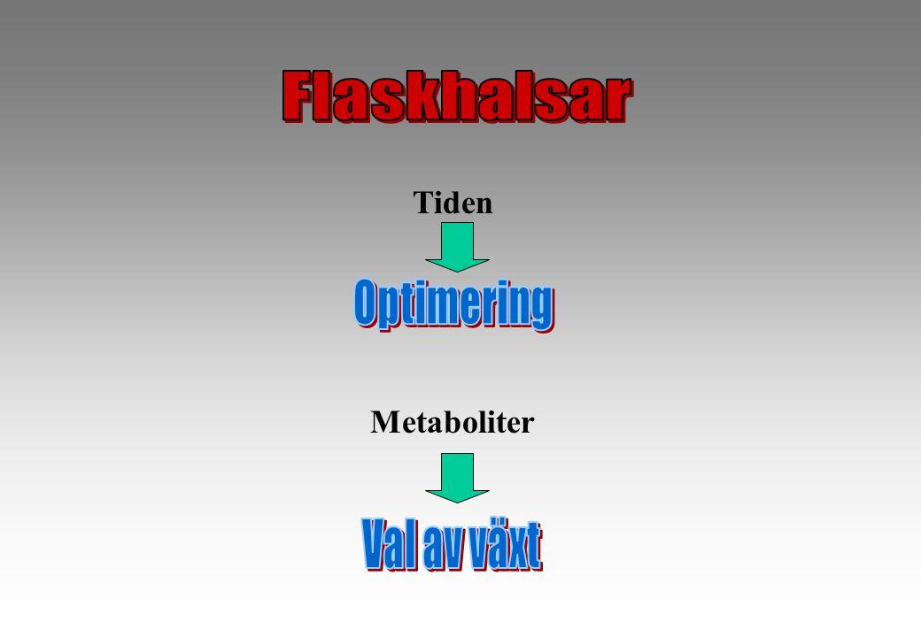 Tiden Metaboliter