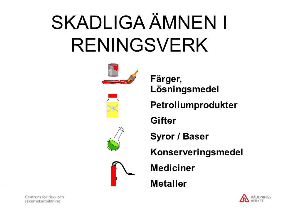 SKADLIGA ÄMNEN I RENINGSVERK Färger, Lösningsmedel Petroliumprodukter Gifter Syror / Baser Konserveringsmedel Mediciner Metaller