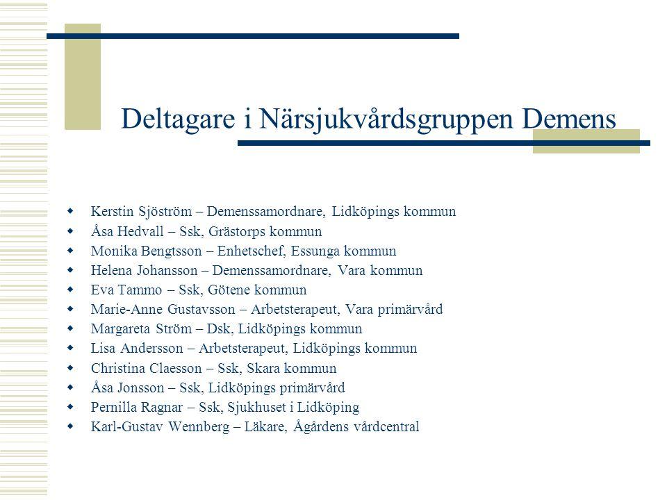 Deltagare i Närsjukvårdsgruppen Demens  Kerstin Sjöström – Demenssamordnare, Lidköpings kommun  Åsa Hedvall – Ssk, Grästorps kommun  Monika Bengtss