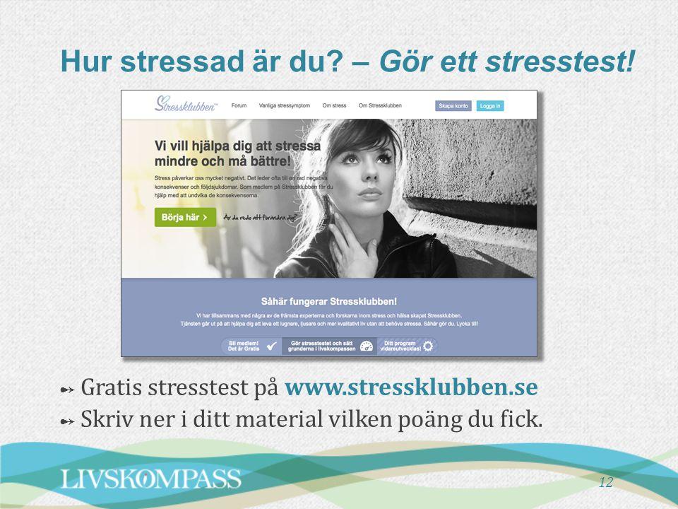 12 Hur stressad är du? – Gör ett stresstest! ➻ Gratis stresstest på www.stressklubben.se ➻ Skriv ner i ditt material vilken poäng du fick.