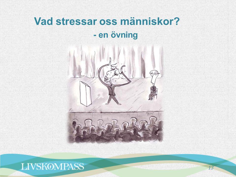 13 Vad stressar oss människor? - en övning