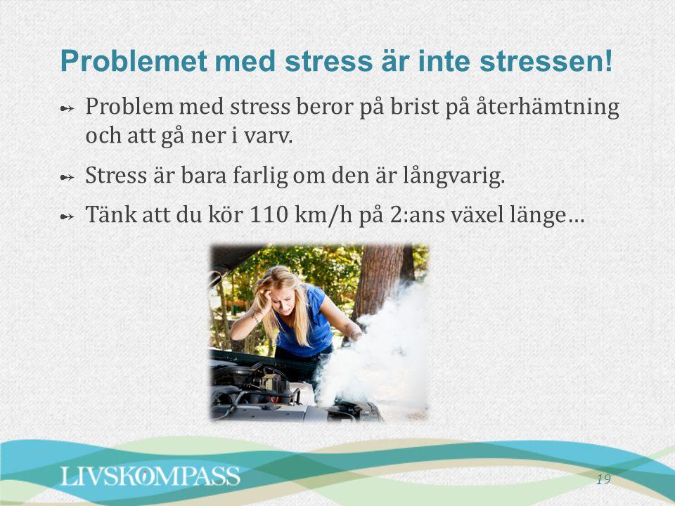 19 Problemet med stress är inte stressen! ➻ Problem med stress beror på brist på återhämtning och att gå ner i varv. ➻ Stress är bara farlig om den är