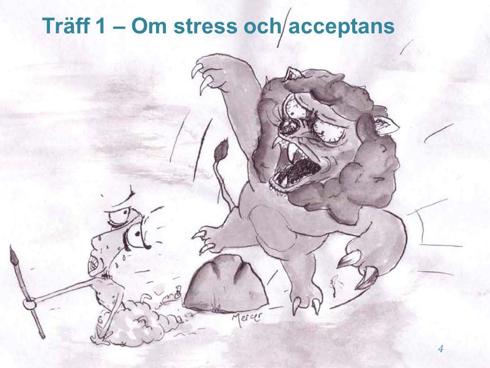 5 Träff 1 - Översikt ➻ ➻ Presentation och dagordning ➻ ➻ Vad är stress.