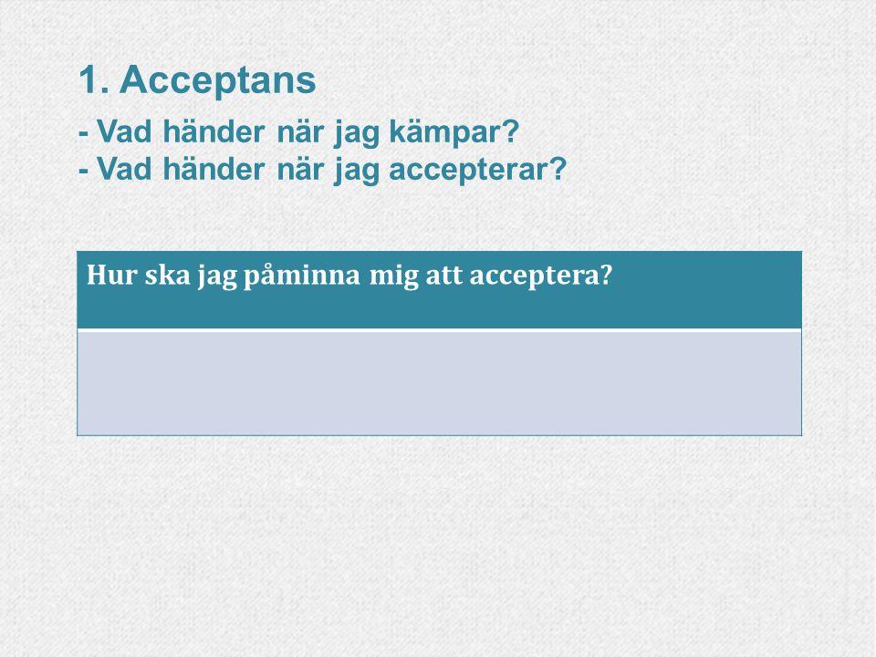 1. Acceptans - Vad händer när jag kämpar? - Vad händer när jag accepterar? Hur ska jag påminna mig att acceptera?