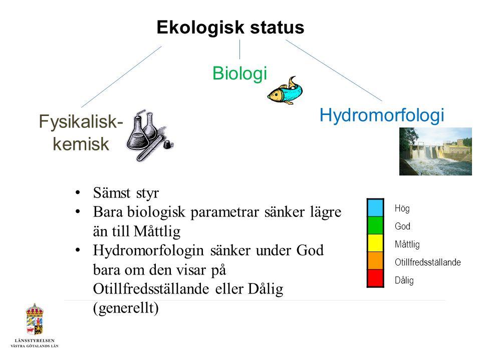 Ekologisk status Hydromorfologi Fysikalisk- kemisk Biologi Hög God Måttlig Otillfredsställande Dålig Sämst styr Bara biologisk parametrar sänker lägre än till Måttlig Hydromorfologin sänker under God bara om den visar på Otillfredsställande eller Dålig (generellt)