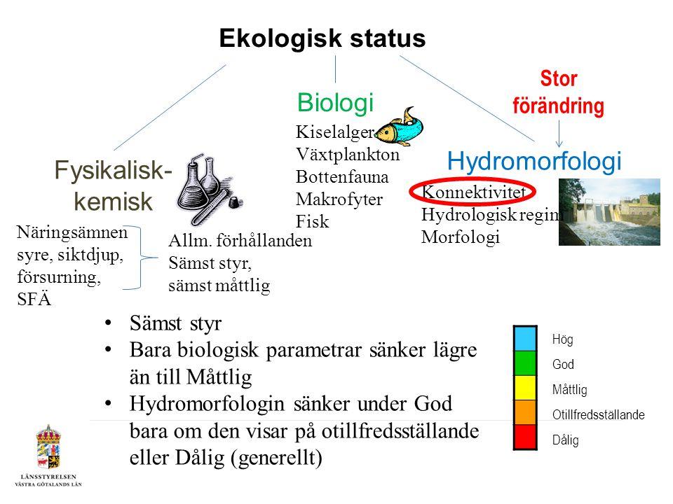 Hydromorfologi Konnektivitet Möjligheten för vattenlevande organismer att röra sig i vattensystemet Längsgående (ned- och uppströmsvandring) Sidledes (möjligheten för organismer att nå vattendraget/sjöns närområde) Sammanvägning enligt sämst styr