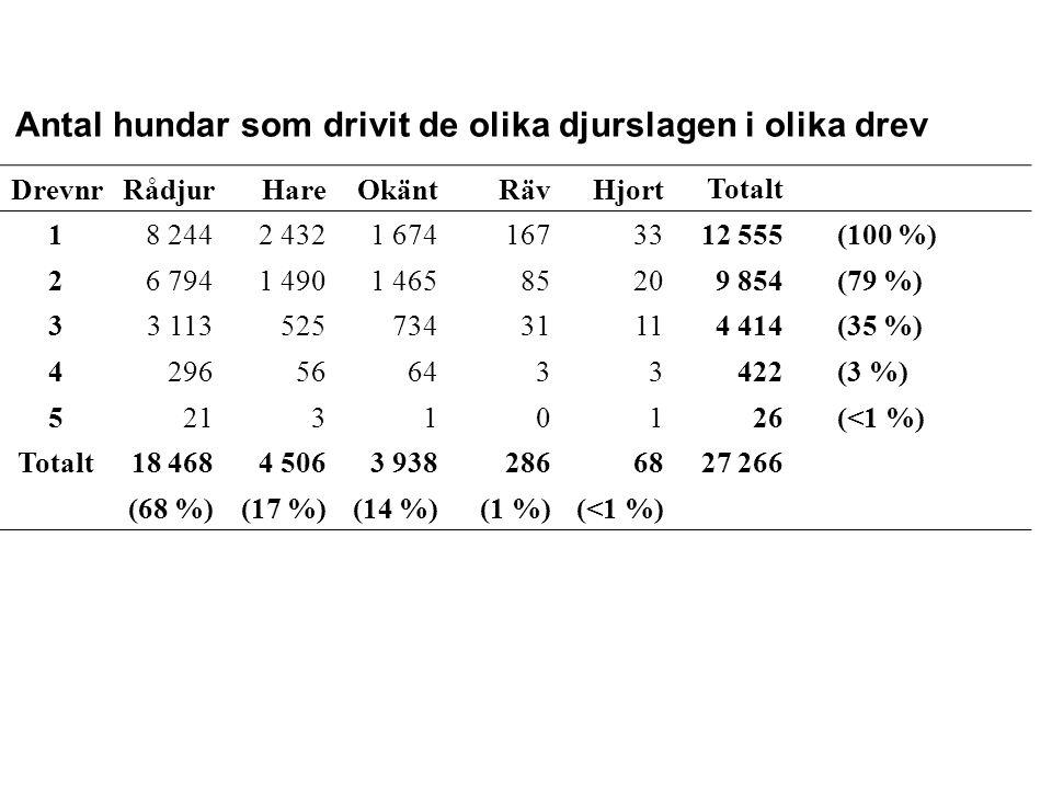 Antal hundar som drivit de olika djurslagen i olika drev DrevnrRådjurHareOkäntRävHjort Totalt 18 2442 4321 67416733 12 555(100 %) 26 7941 4901 4658520 9 854(79 %) 33 1135257343111 4 414(35 %) 4296566433 422(3 %) 5213101 26(<1 %) Totalt18 4684 5063 93828668 27 266 (68 %)(17 %)(14 %)(1 %)(<1 %)