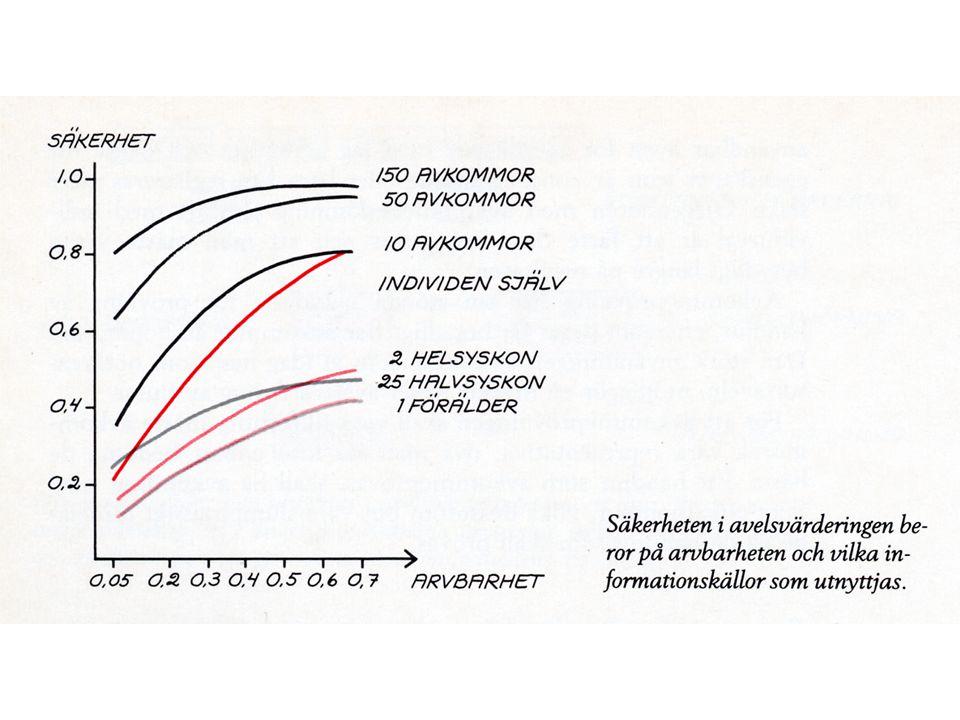 Drevprovsanalys 1980-1984 Swenson, Andersson & Johansson, 1986 5 919 drevprov på drever ca 2 000 startande hundar efter 419 hanar Modell= kön, provår, provmånad, ålder, provnummer, antal syskon i kullen *Tikar lika bra eller bättre än hanar utom i skall hörbarhet *Poängen ökade med ålder och erfarenhet