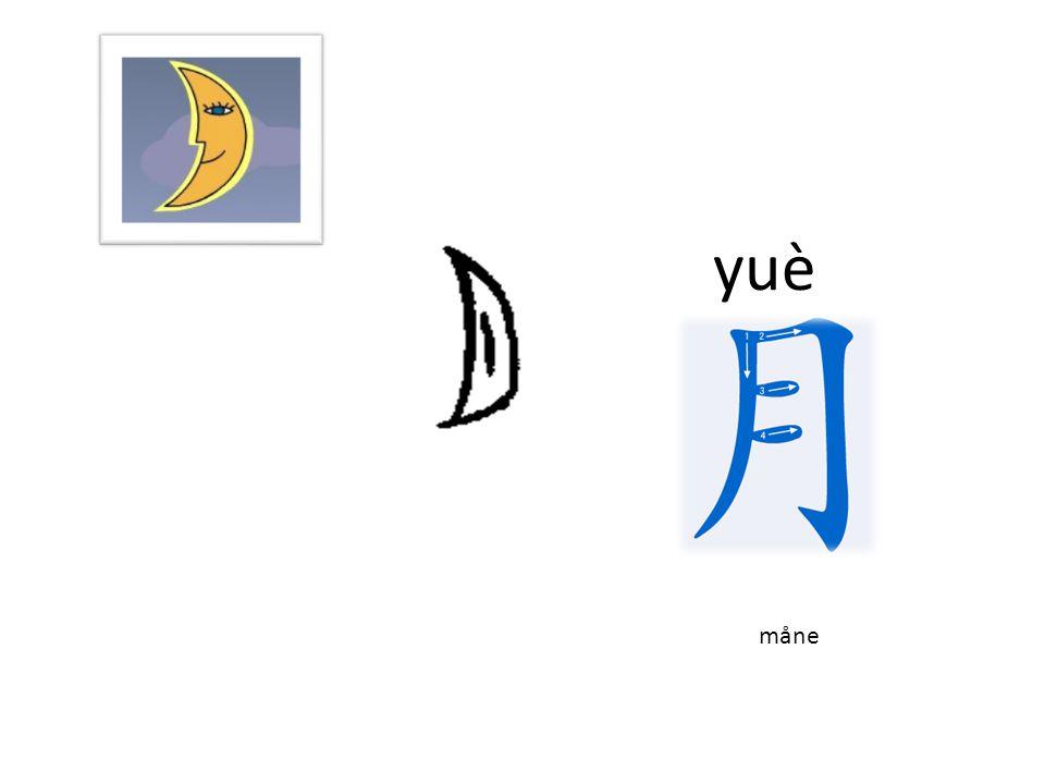 yáng 羊 yáng får