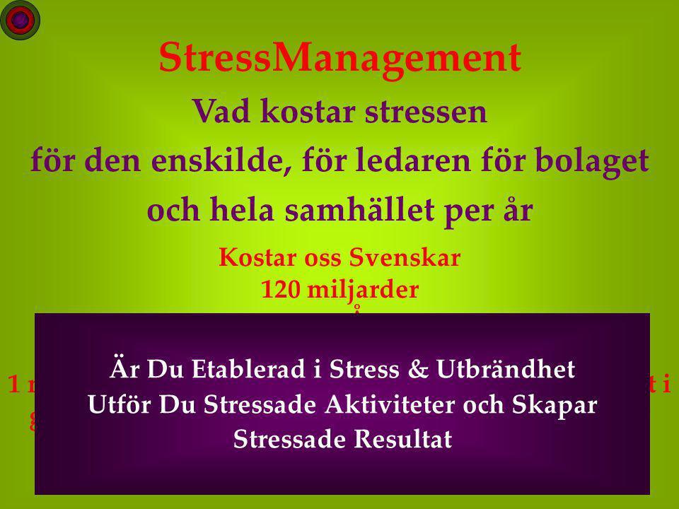 20 StressManagement Vad kostar stressen för den enskilde, för ledaren för bolaget och hela samhället per år Kostar oss Svenskar 120 miljarder per År eller 1 miljon/minut och har under de senaste två åren ökat i genomsnitt 25 miljoner per dag och blir ca 8.800 per innevånare / år.