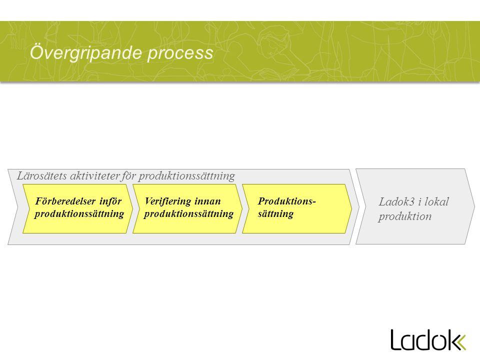 Övergripande process Lärosätets aktiviteter för produktionssättning Förberedelser inför produktionssättning Verifiering innan produktionssättning Prod