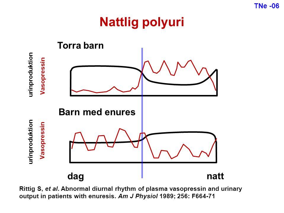 TNe -06 Jämförelse imipramin-tolterodin-placebo Helt torra på imipramin >50% effekt av imipramin >50% effekt av båda läkemedlen Ingen effekt Drop-out (biverkningar) Spontant torr 26 16 5 2