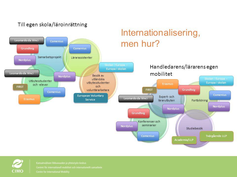Internationalisering, men hur? Samarbetsprojekt Utbytesstudenter och -elever Lärarassistenter Besök av utländska utbytesstudenter och voluntärarbetare