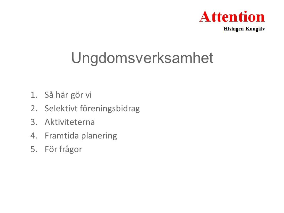 Ungdomsverksamhet 1.Så här gör vi 2.Selektivt föreningsbidrag 3.Aktiviteterna 4.Framtida planering 5.För frågor