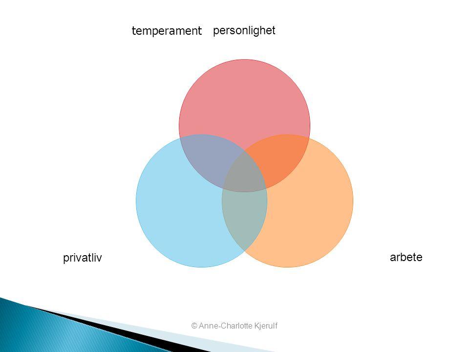 personlighet arbeteprivatliv temperament © Anne-Charlotte Kjerulf