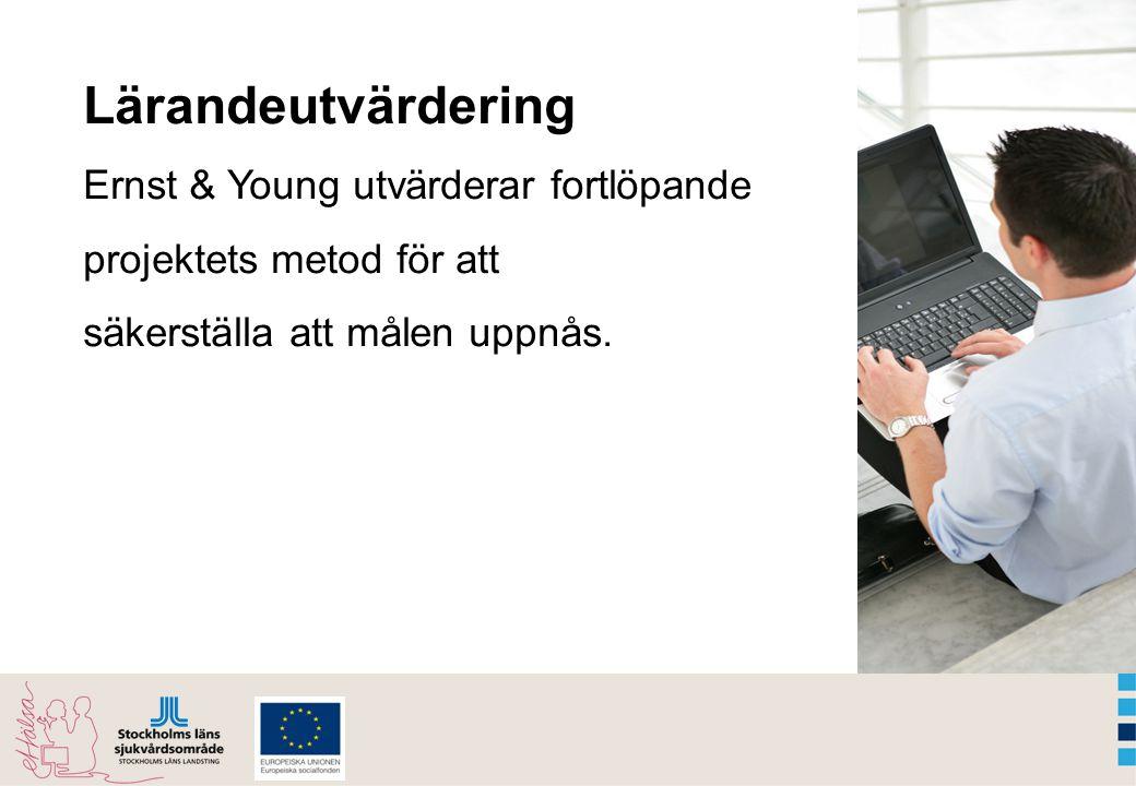 Lärandeutvärdering Ernst & Young utvärderar fortlöpande projektets metod för att säkerställa att målen uppnås.