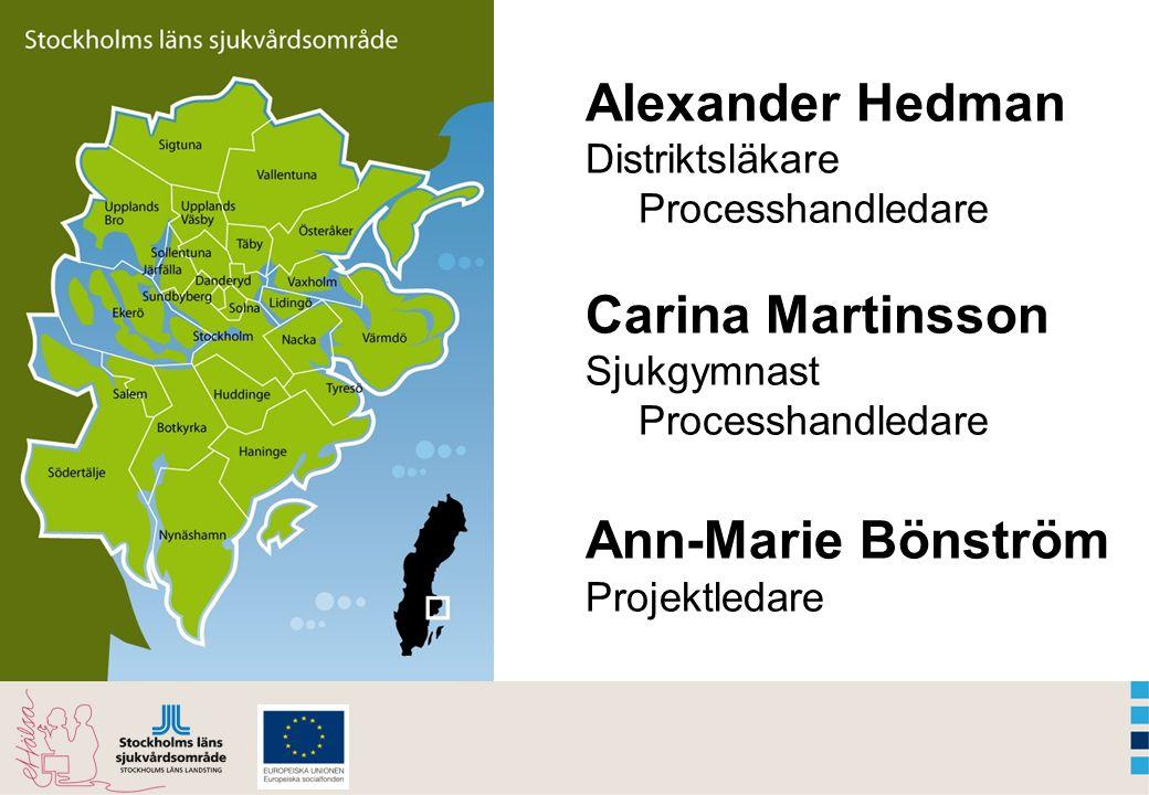 Alexander Hedman Distriktsläkare Processhandledare Carina Martinsson Sjukgymnast Processhandledare Ann-Marie Bönström Projektledare