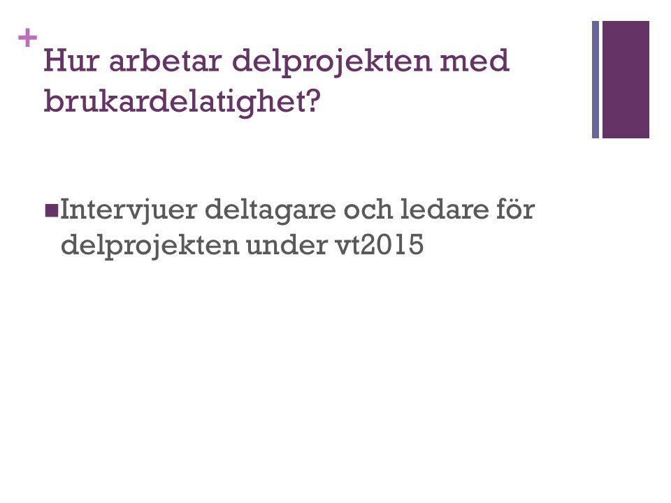 + Hur arbetar delprojekten med brukardelatighet? Intervjuer deltagare och ledare för delprojekten under vt2015