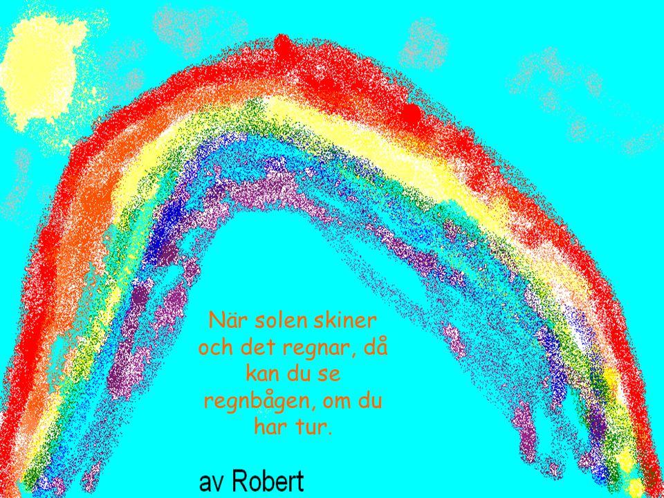 När solen skiner och det regnar, då kan du se regnbågen, om du har tur.