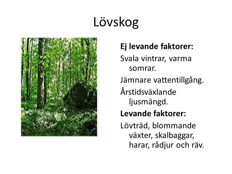 Lövskog Ej levande faktorer: Svala vintrar, varma somrar. Jämnare vattentillgång. Årstidsväxlande ljusmängd. Levande faktorer: Lövträd, blommande växt