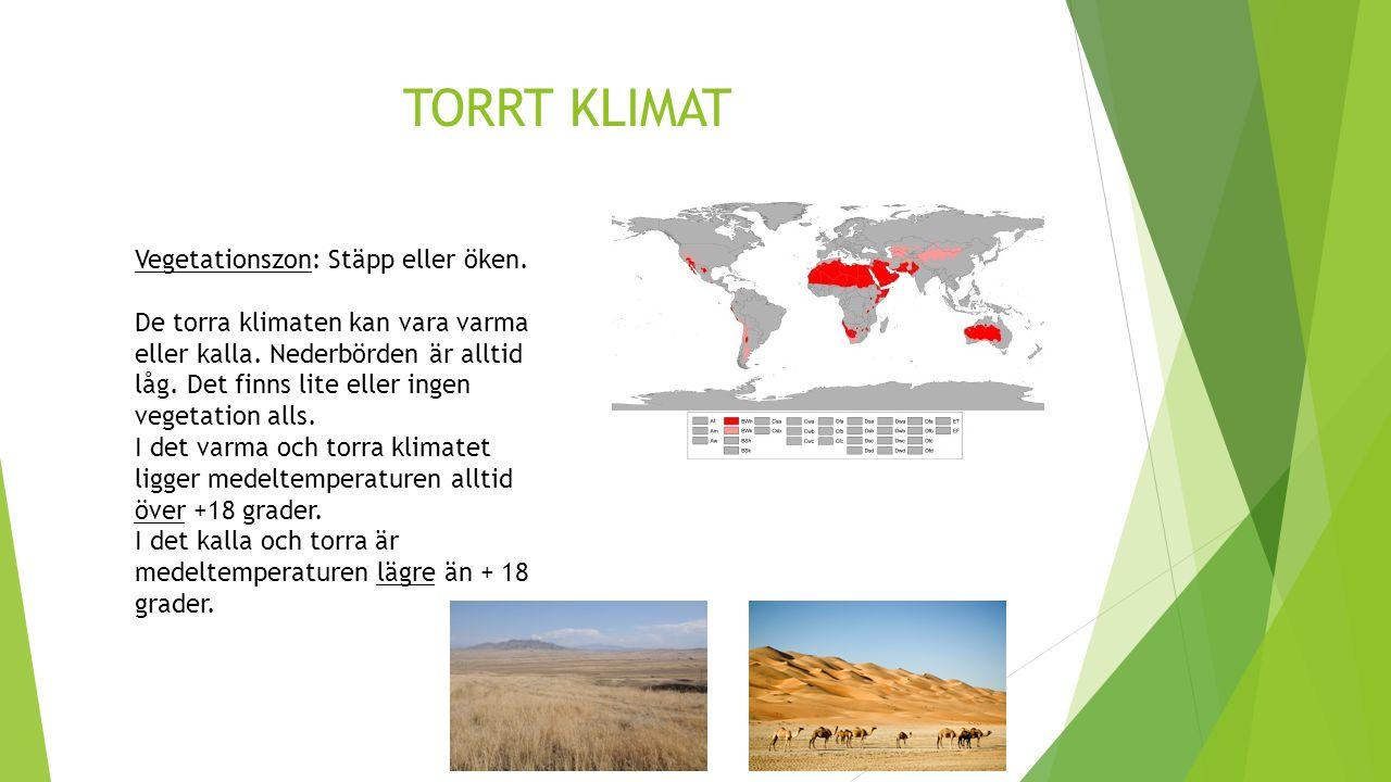 TORRT KLIMAT Vegetationszon: Stäpp eller öken. De torra klimaten kan vara varma eller kalla. Nederbörden är alltid låg. Det finns lite eller ingen veg