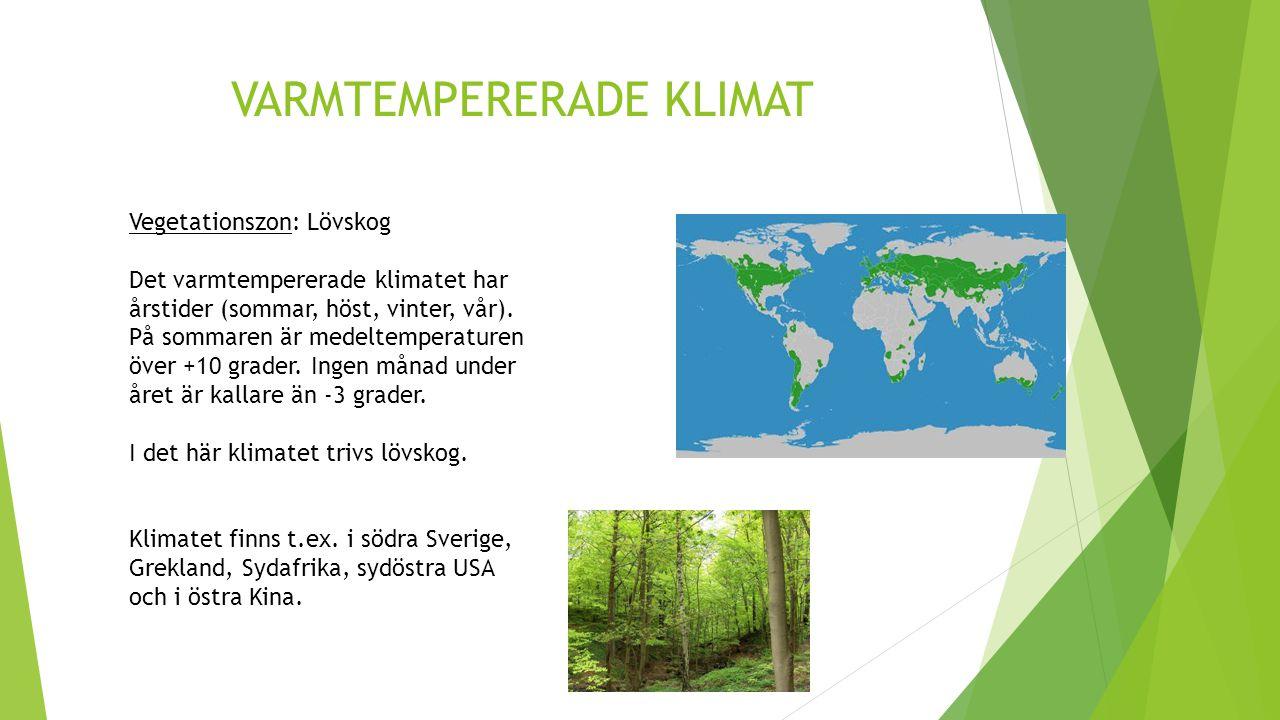 VARMTEMPERERADE KLIMAT Vegetationszon: Lövskog Det varmtempererade klimatet har årstider (sommar, höst, vinter, vår). På sommaren är medeltemperaturen