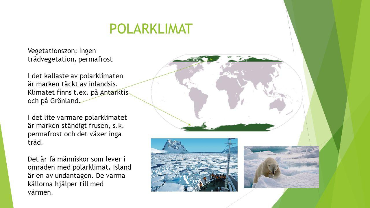 POLARKLIMAT Vegetationszon: Ingen trädvegetation, permafrost I det kallaste av polarklimaten är marken täckt av inlandsis. Klimatet finns t.ex. på Ant