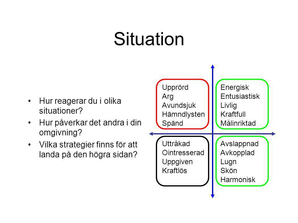 Situation Hur reagerar du i olika situationer? Hur påverkar det andra i din omgivning? Vilka strategier finns för att landa på den högra sidan? Upprör