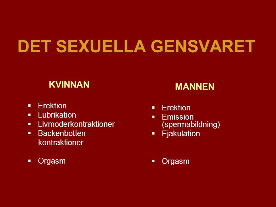 DET SEXUELLA GENSVARET KVINNAN  Erektion  Lubrikation  Livmoderkontraktioner  Bäckenbotten- kontraktioner  Orgasm MANNEN  Erektion  Emission (spermabildning)  Ejakulation  Orgasm