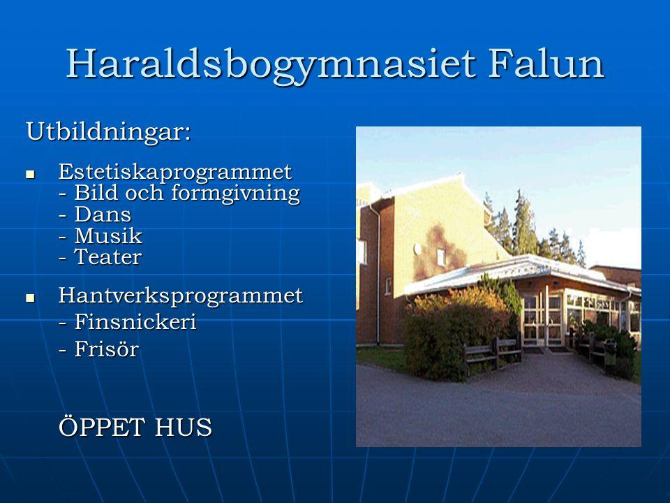 Haraldsbogymnasiet Falun Utbildningar: Estetiskaprogrammet - Bild och formgivning - Dans - Musik - Teater Estetiskaprogrammet - Bild och formgivning -