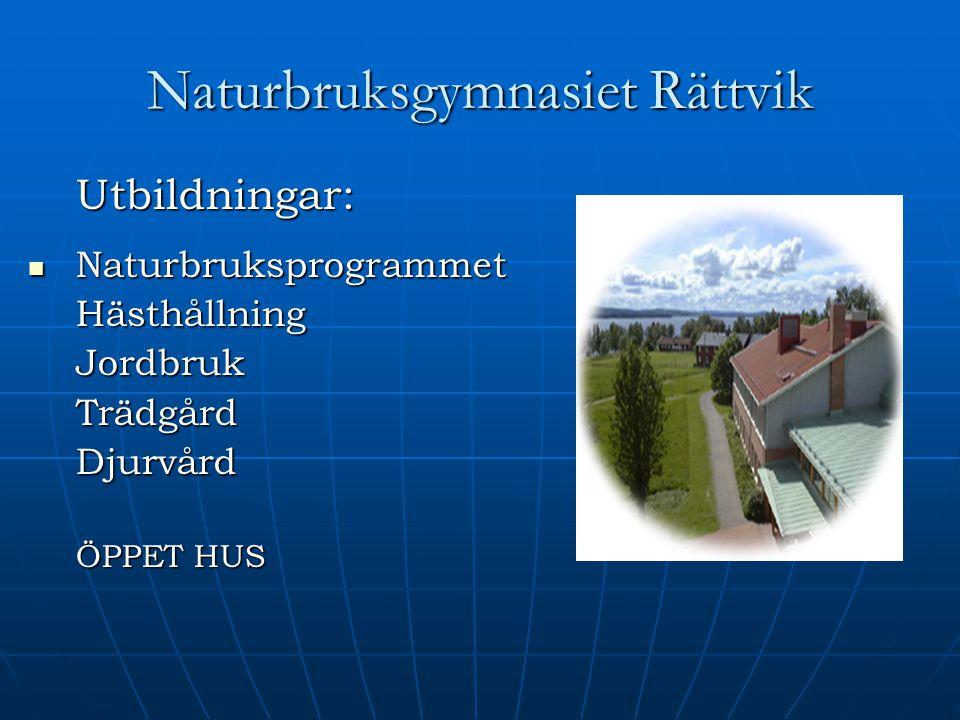 Naturbruksgymnasiet Rättvik Utbildningar: Naturbruksprogrammet NaturbruksprogrammetHästhållningJordbrukTrädgårdDjurvård ÖPPET HUS