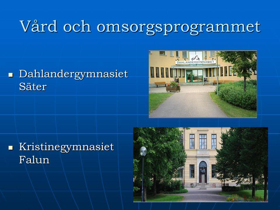 Vård och omsorgsprogrammet Dahlandergymnasiet Säter Dahlandergymnasiet Säter Kristinegymnasiet Falun Kristinegymnasiet Falun