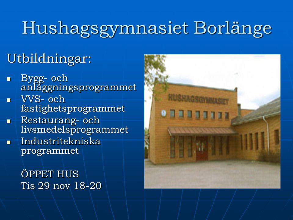 Hushagsgymnasiet Borlänge Utbildningar: Bygg- och anläggningsprogrammet Bygg- och anläggningsprogrammet VVS- och fastighetsprogrammet VVS- och fastigh