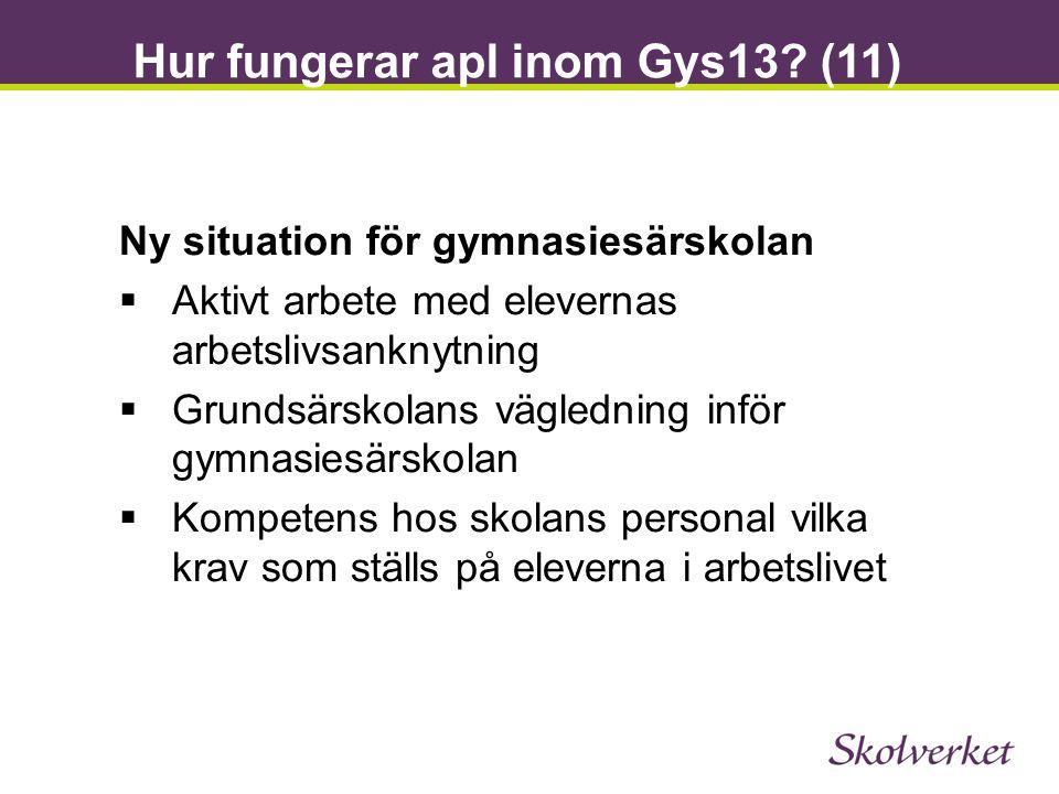 Hur fungerar apl inom Gys13? (11) Ny situation för gymnasiesärskolan  Aktivt arbete med elevernas arbetslivsanknytning  Grundsärskolans vägledning i