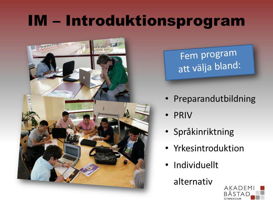IM – Introduktionsprogram Fem program att välja bland: Fem program att välja bland: Preparandutbildning PRIV Språkinriktning Yrkesintroduktion Individuellt alternativ